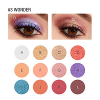 FOCALLURE Eye shadow 12 Colours Matte
