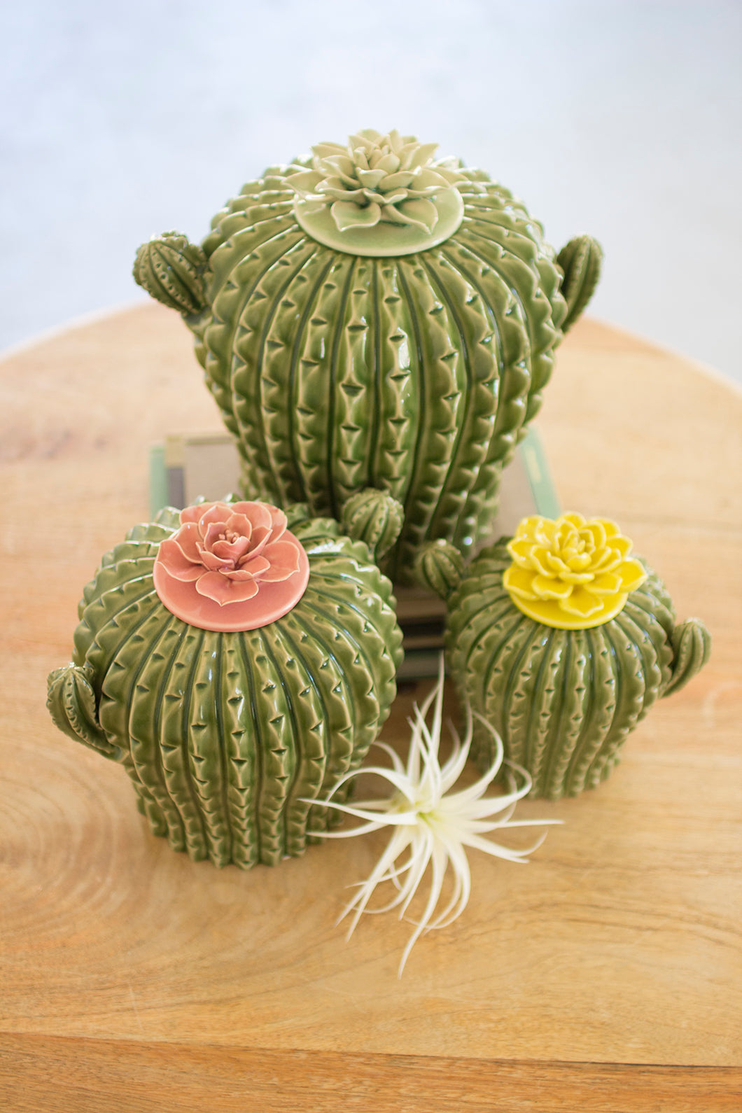 Set of Three Cactus Canisters w/Flower Tops