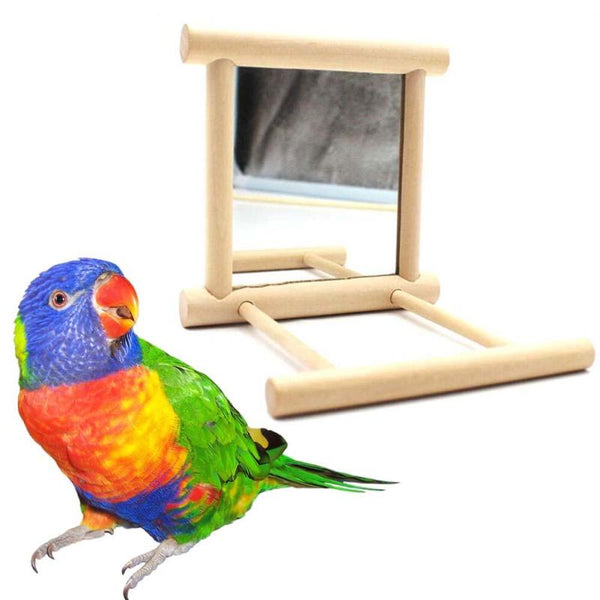 Bird Toy Mirror