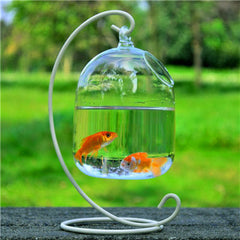 Unique Hanging Glass Aquarium Fish Tank With Rack