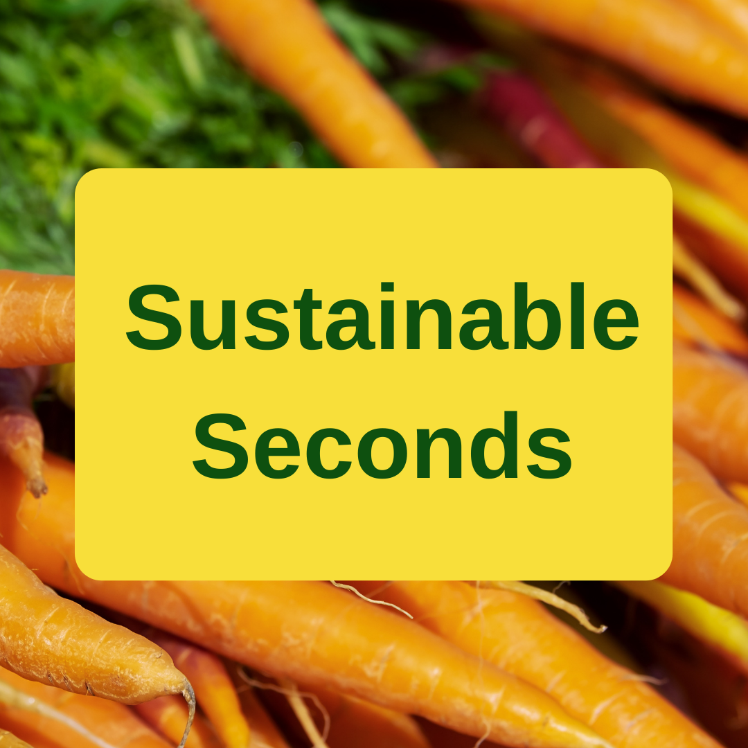 Sustainable Seconds