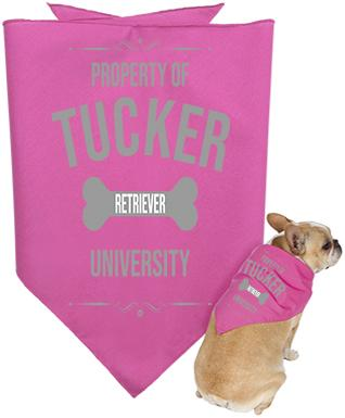 Pink dog bandanna with personalized text in grey writing.
