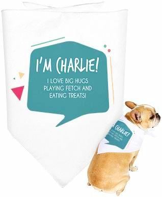 Dog bandanna with personalized text on it.