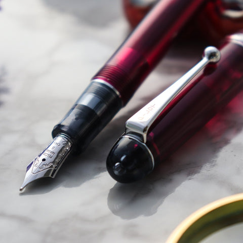 Pilot Custom 74 Fountain Pens