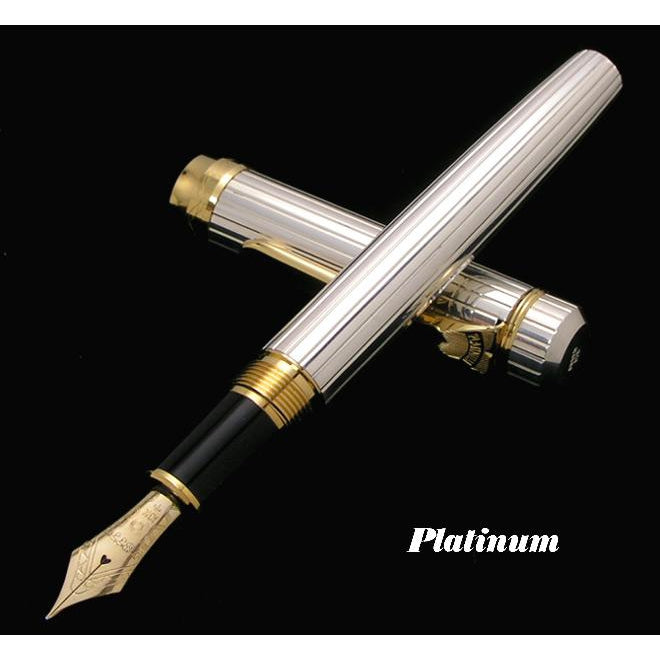 PLATINUM Since 1919 Series Pin Stripe 18K Gold Nib Fountain Pen - Silver