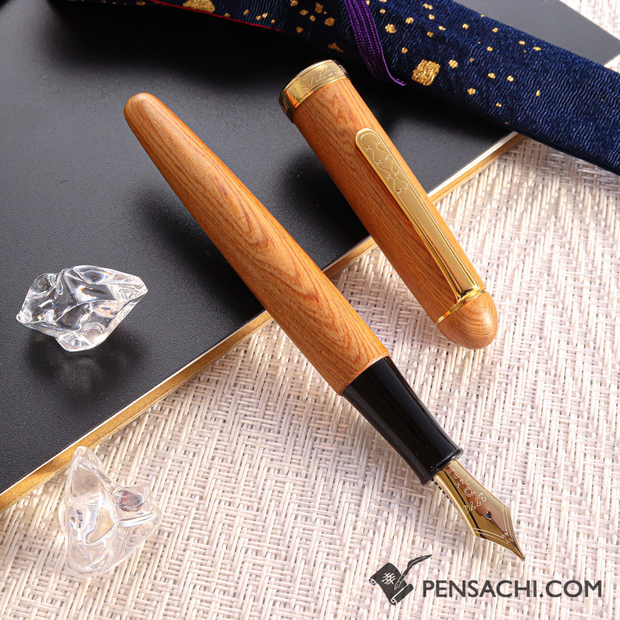 PLATINUM #3776 Century Fountain Pen -  Yakusugi - PenSachi Japanese Limited Fountain Pen