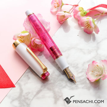 Wancher Sailor Professional Gear Pink Cosmo Fountain Pen Sparkling Rose Pink