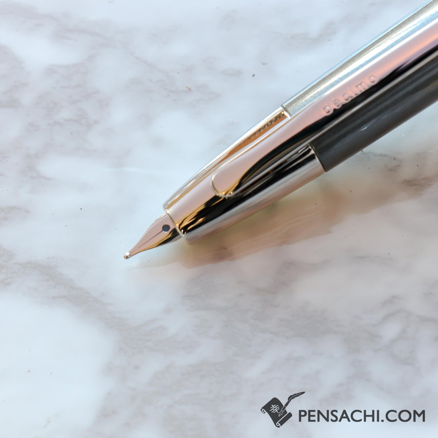 PILOT Vanishing Point Capless Decimo Fountain Pen - Dark Gray - PenSachi Japanese Limited Fountain Pen