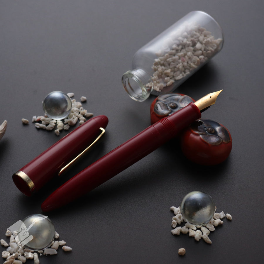 SAILOR 1911 Profit Professor Fountain Pen - Red - PenSachi Japanese Limited Fountain Pen