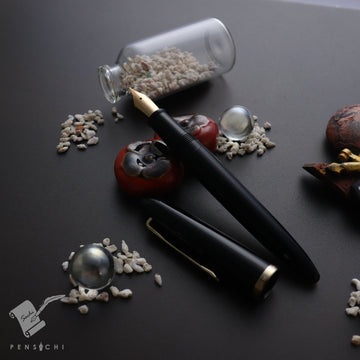Sailor Limited Edition Professor Stainless Steel Medium Fine nib - Black Fountain Pen- PenSachi Japanese Limited Fountain Pen
