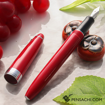 PILOT Custom NS Fountain Pen - Red - PenSachi Japanese Limited Fountain Pen