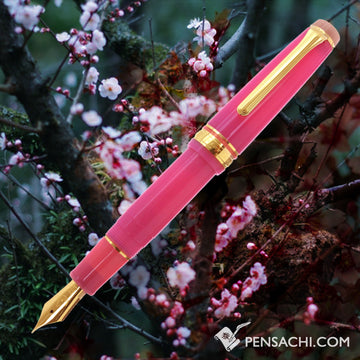 SAILOR Limited Edition Professional Gear Mini Fountain Pen -  Sakura - PenSachi Japanese Limited Fountain Pen
