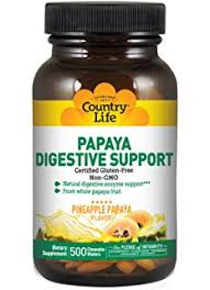 Country Life - Papaya Digestive Support - 500 Chewable Wafers