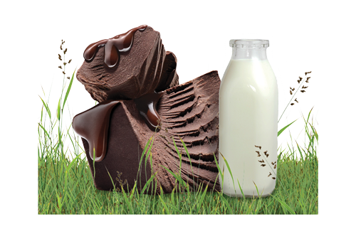 Shop ORGANIC MILK CHOCOLATE BARS
