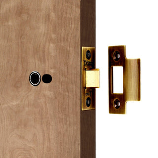 Image: Delamain DL5040 Tubular Latch 101mm Heavy Sprung