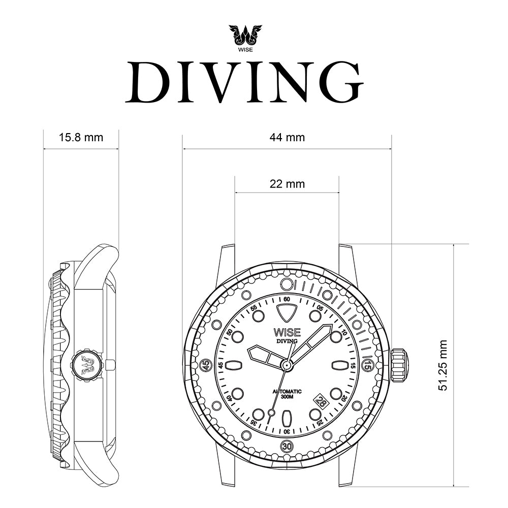 DIVING DS311