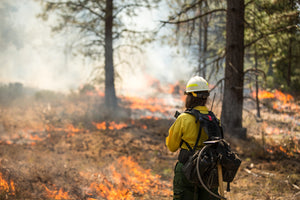 Wildfire Season: What You Need To Know