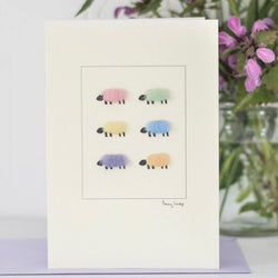 Six Pastel Sheep Card by Penny Lindop