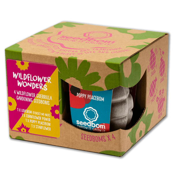 Seedbom Gift Box Wildflower Wonders
