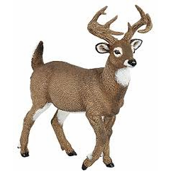 White Tailed Deer Figurine (Papo)