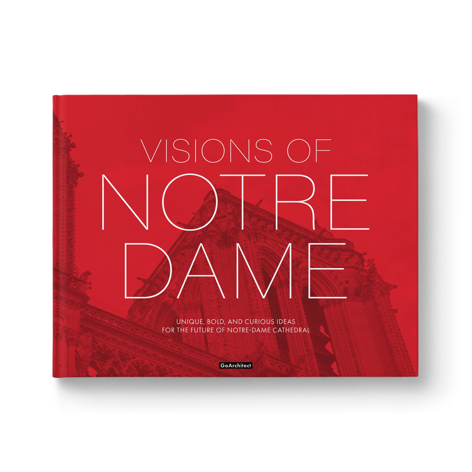 Visions of Notre-Dame