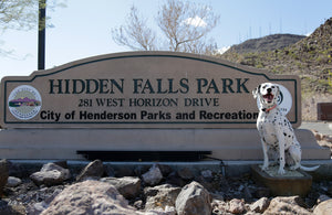 Las Vegas Dog Park Review: Hidden Falls Park