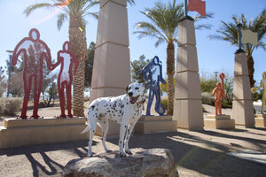 Las Vegas Dog Park Reviews: Kellogg-Zaher Dog Park