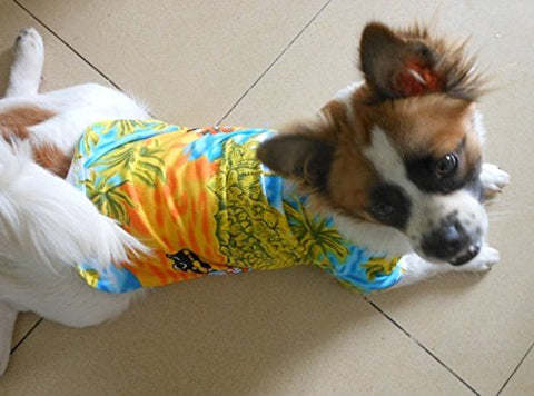 hawaiian dog shirt model