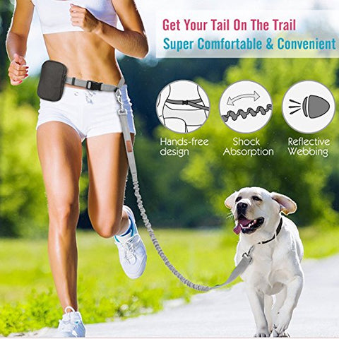 hands free elastic running leash
