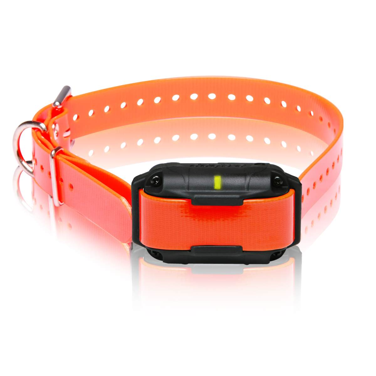 Dogtra Add A Collar for Expandable 2300NCP Dog Training - London the Local