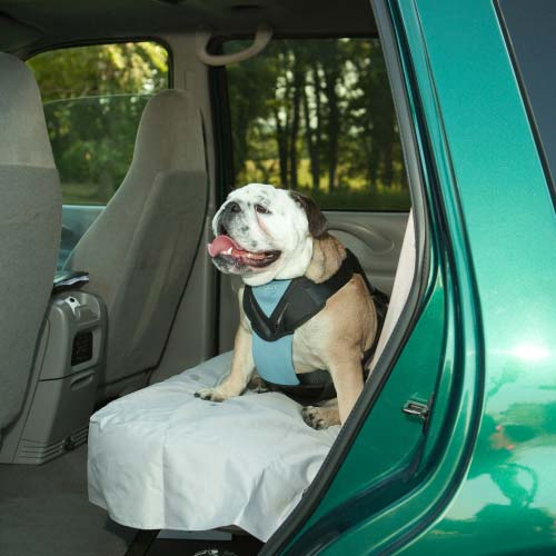 Bergan Dog Travel Harness Extra Large Blue