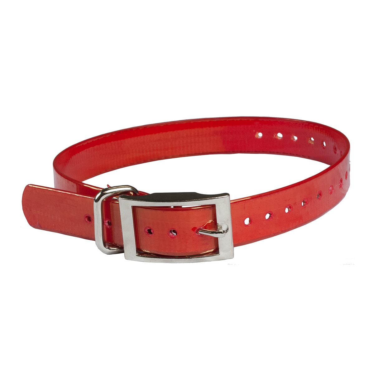 "The Buzzard's Roost Collar Strap 1"" Red 1"" x 24"" Dog GPS Tracking - London the Local"