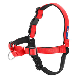 PetSafe-Deluxe Easy Walk Harness-Medium-Rose-Harnesses-Dog-Collars and Leashes