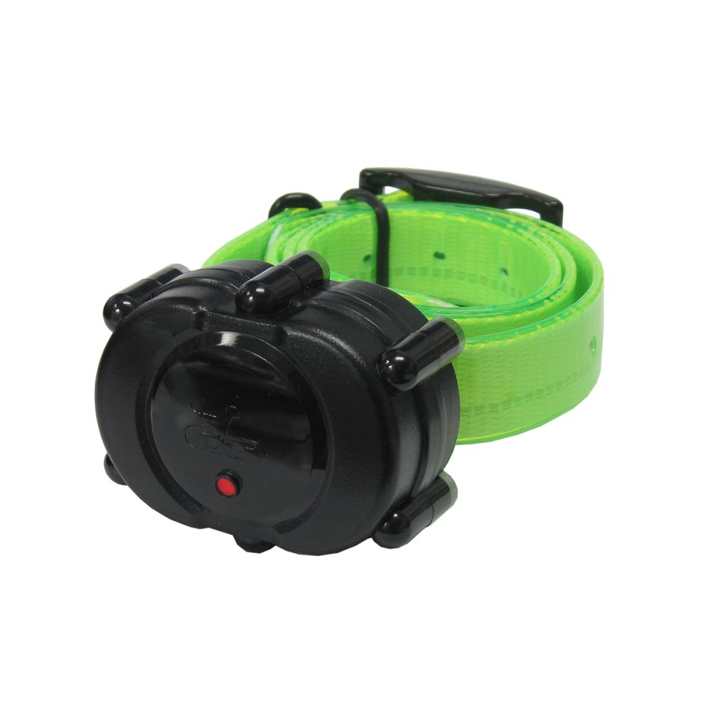 D.T. Systems Micro-iDT Remote Dog Trainer Add-On Collar Black Green Dog Training - London the Local