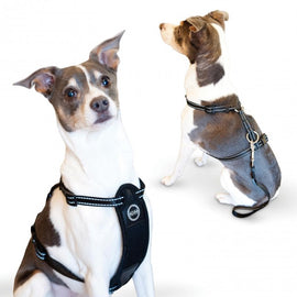 K&H Pet Products Travel Safety Pet Harness Medium Black Dog Travel - London the Local