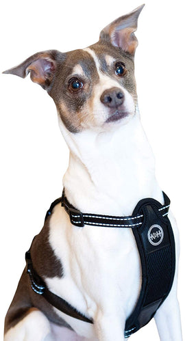K&H Pet Products Travel Safety Pet Harness Extra Large Black Dog Travel - London the Local