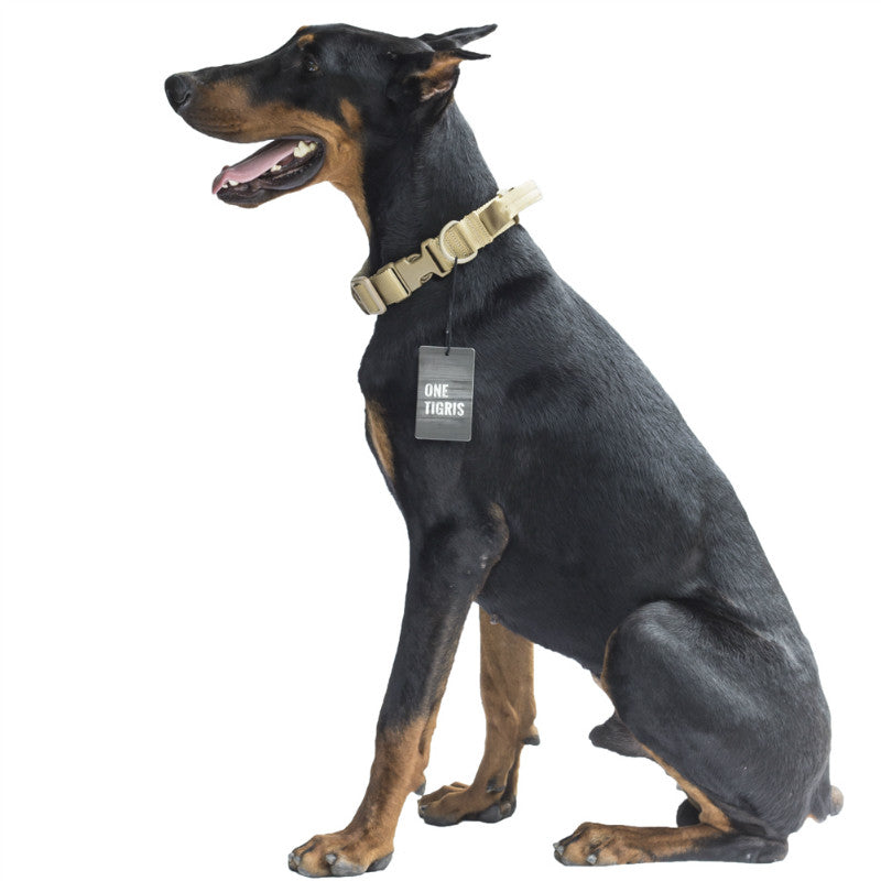 Tactical Military Dog Collar with Handle Dog Collar - London the Local