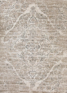 Persian Distressed Beige Area Rugs