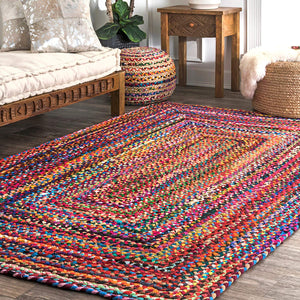 Hand Braided Multi Soft Area Rugs