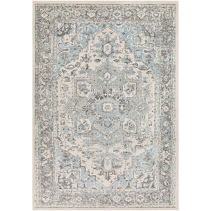 Traditional Pale Blue Gray white Area Rugs