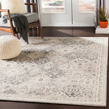 Traditional Medallion Light Grey Beige White Area Rug