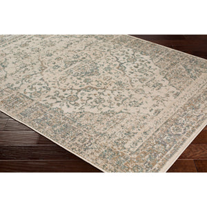 Vintage Traditional Gray Beige Cream Area Rug