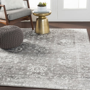 Distressed Light Gray White Soft Area Rug