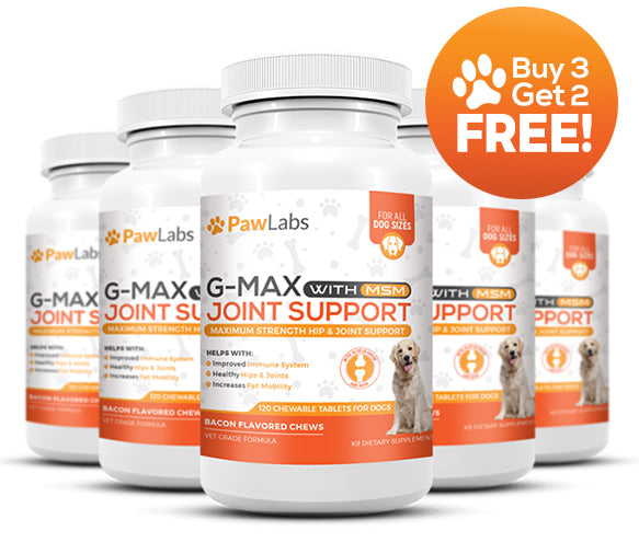 G-Max Joint Support Supplement