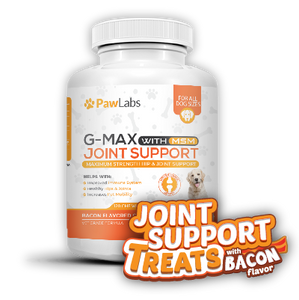 G-Max Joint Support Treats with Bacon Flavor