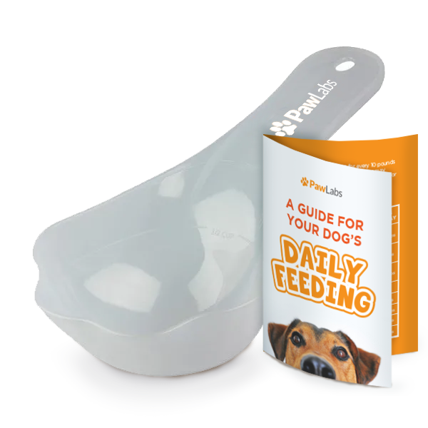 Food Measure Scooper