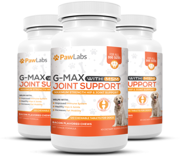 G max joint support supplement discounted