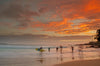 Manly Sunrise - Large Print