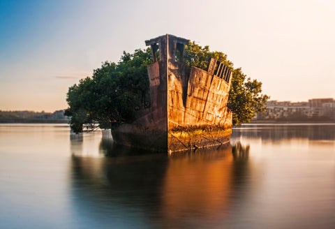 Wreck of SS Ayrfield, Homebush Bay