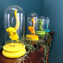 Bright Yellow Flocked Antelope Skull in Glass Dome